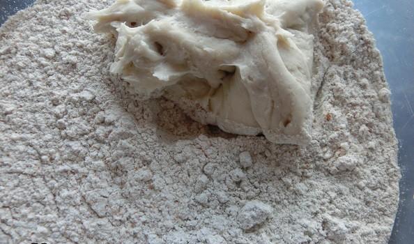 Alimentamos la MM con la harina integral.