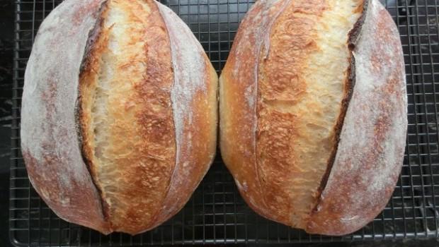 Panes con escaldado de Txakinarto