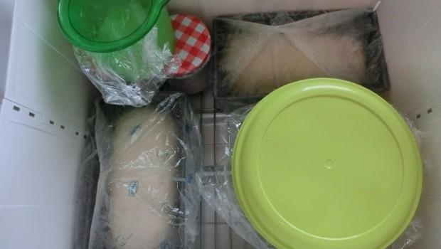 Un ramillete de masas madre, panes de molde y masa fermentando.